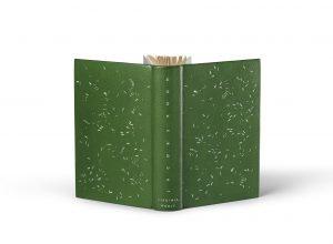 jacob-s-room-by-virginia-woolf-bespoke-fine-art-leather-binding.jpeg